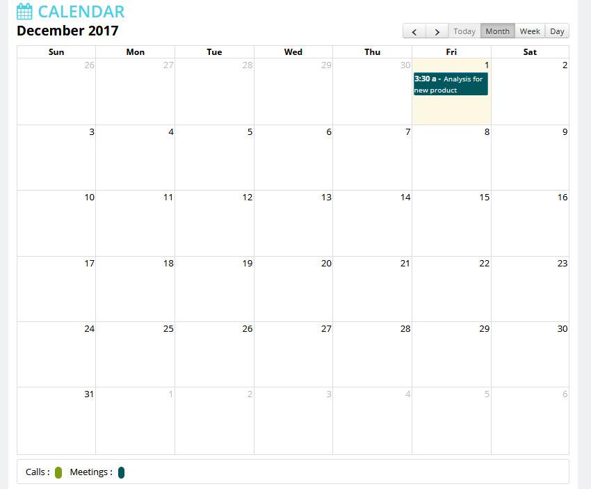 Calendar View of daily activities